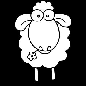 Schaf weiss