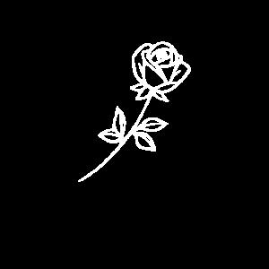 Rose Blume Natur Liebe