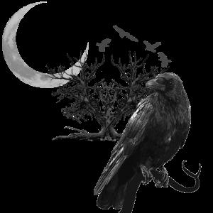 Rabe mit Sichelmond, collage Gothic