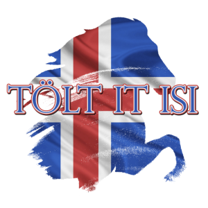 Tölt it easy Islander Icelandic Horse Pferd