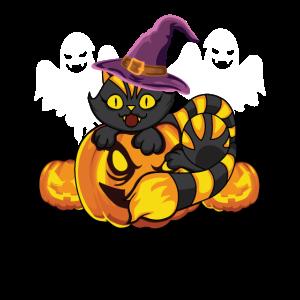 Halloween Cat Witch Hat Pumpkin Black Cat Costume