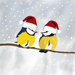 Vogel Blaumeisen Mund-Nasen-Maske Weihnachten