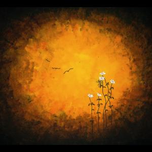 Traum Blumen Geschenkidee