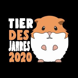 Tier des Jahres 2020 Hamstern Hamsterkäufe Motiv