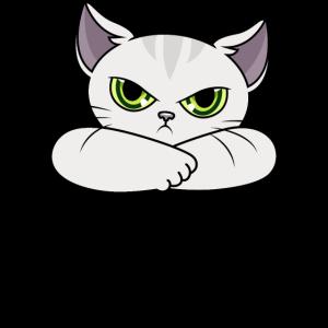 Katze Sprüche Wer früh aufsteht hasst mehr vom Tag
