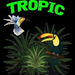 Tropisch