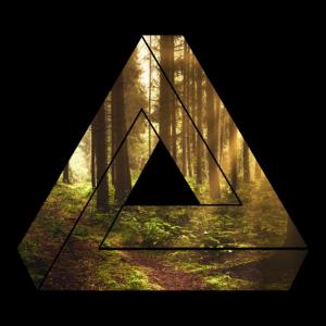 Wald Dreieck / Natur / Geschenk