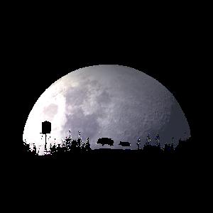 Wildschwein Keiler lustiges Geschenk Jäger Jagd