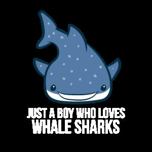 Nur ein Junge der Walhaie liebt