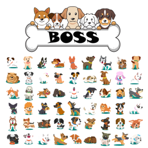 Hunde Chef