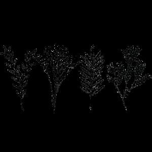 Pflanzenmuster 1