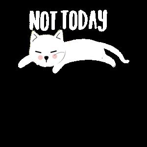 Not Today Lustige Katze Katzenmotiv Frauen
