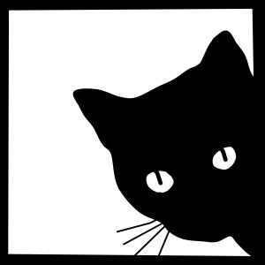 süsse Katze