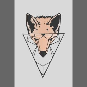 Fuchs Geometrie hell