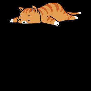 nicht heute faule Katze entspannen Zeit neko