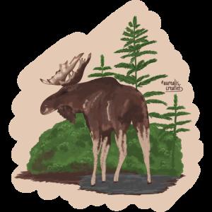 Elche im Wald