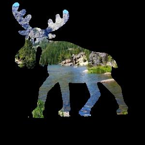 elch berge