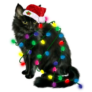 Katze mit Lichterkette für Weihnachten