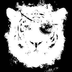 Tiger Pirat