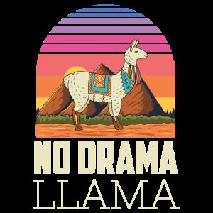 No Drama Lama Yoga Energie