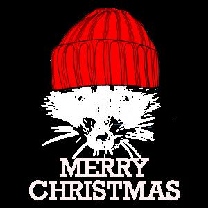 Waschbär Weihnachten
