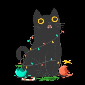 Schwarze Katze Lichterkette Katzenliebhaber