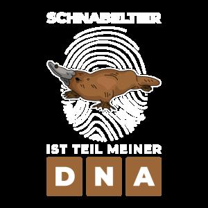 Schnabeltier Ente Säugetier Australien - Meine DNA
