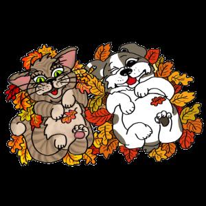 Blätterspaß Kolumbus und Katze