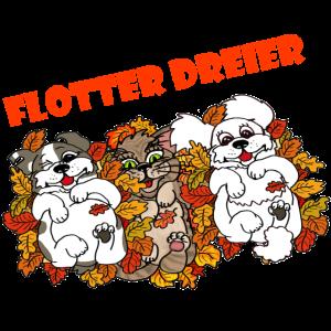 Flotter Dreier - Hund, Pudel, Katze