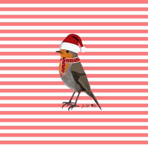 Rotkehlchen Weihnachten Rot Weiß Mund-Nasen-Maske