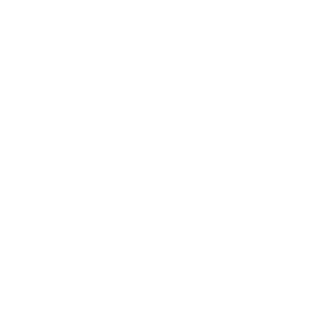 Brides tribe Hochzeit 2020 Brautjungfer