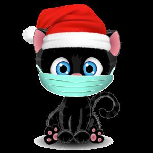 Weihnachten Mundschutz Katze