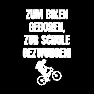 Zum biken geboren, zur Schule gezwungen!