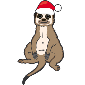 Lustiges Erdmännchen Santa Weihnachten Geschenk