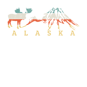 ALASKA SHIRT 2 DISTRESSED
