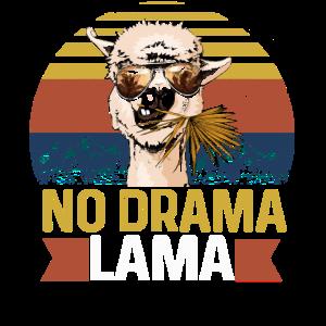 No Drama Lama Yoga Alpaka Namaste
