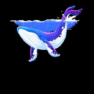 Blauwal Zeihnung