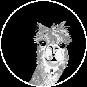 Alpaka - Zeichnung Tier Kopf nett schwarz-weiss