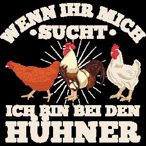 Hühner Wenn ihr mich sucht ich bin bei den Hühnern