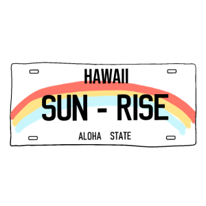 Hawaii Sun Rise, lustiges Sommer-T-Shirt