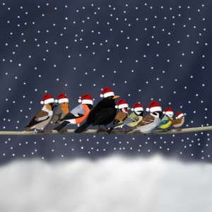 Lustige Gartenvögel Schnee Weihnachtsmützen Vogel