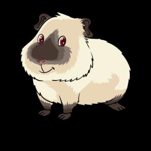 Süßes Himalaya Meerschweinchen Besitzer und
