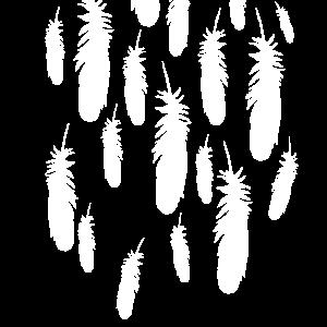 Feder Federschmuck - Fallende Federn