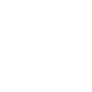 Pferd Pferde Herzschlag Reiter Reiterin Reitsport