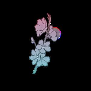 Schönheit einer Blume