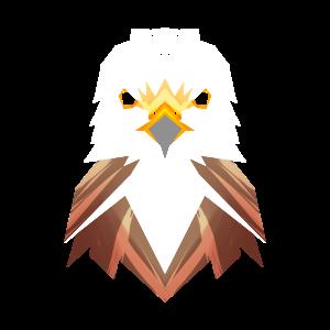 Falke Vogel Raubvogel Falknerei Falkner Polygon