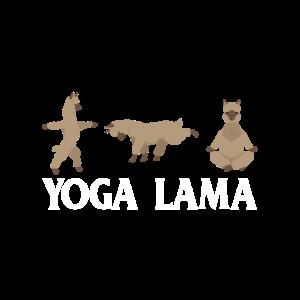 Yoga Lama Alpaka Workout LLamaste