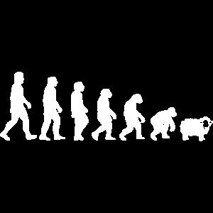 EVOLUTION SCHLAFSCHAF CORONA DEMO