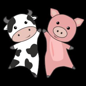 Schwein Kuh Schweinchen süße Bauernhof Tiere