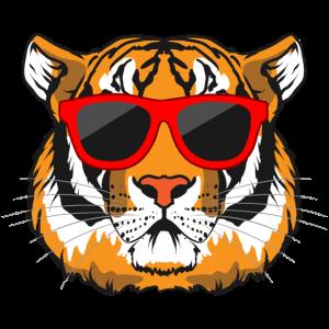 Tigerkopf Tiger Raubkatze